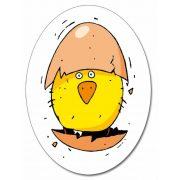 Piou Piou - tojás gyűjtögető kártyajáték  - Djeco