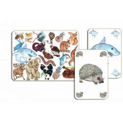 Zanimatch - gyorsaság,kártyajáték - Djeco