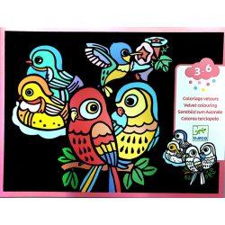 Madarak - Bársony színező - Baby birds